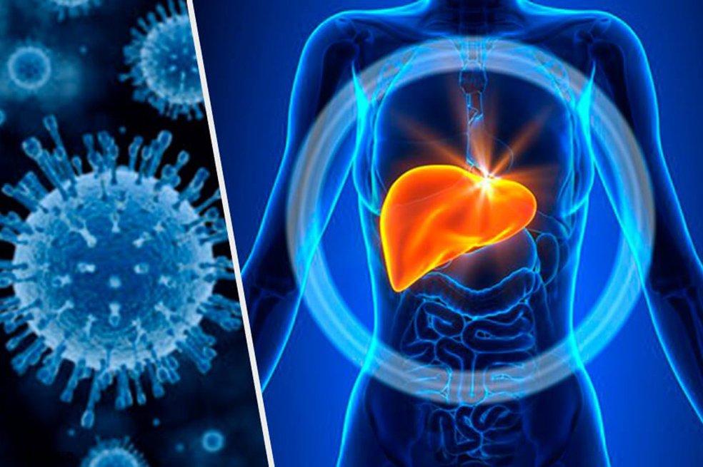 Conoce el ABC de la hepatitis - Patrimonio Radial del..