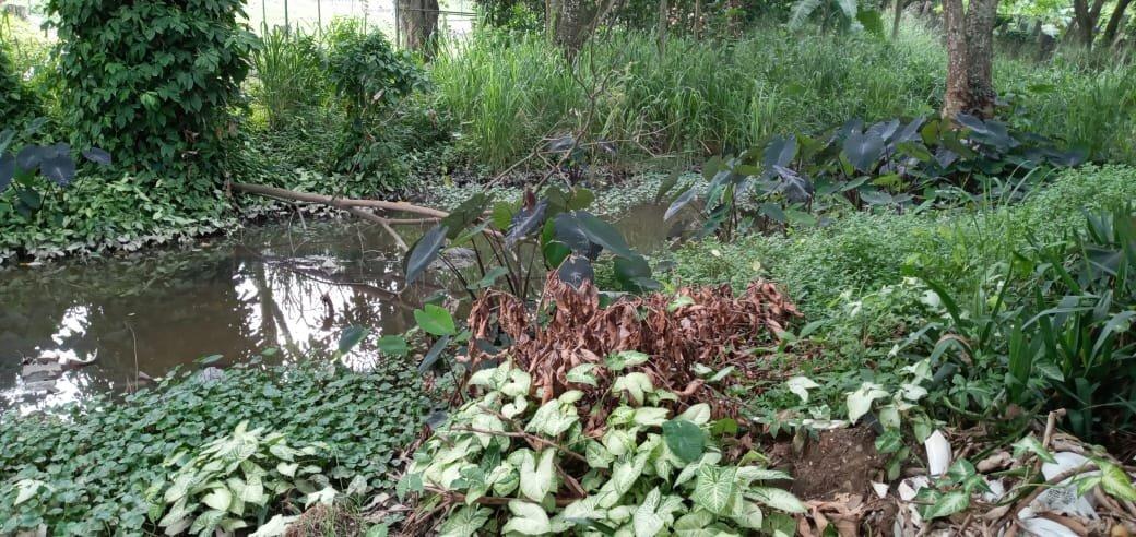 Nacimiento del Río Opia en Ibagué
