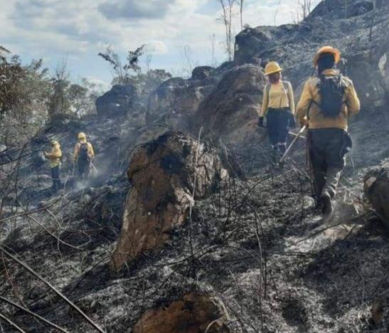 Alcalde de Cunday, Luis Gabriel Pérez, entrega detalles del incendio que afecta al municipio desde el fin de semana