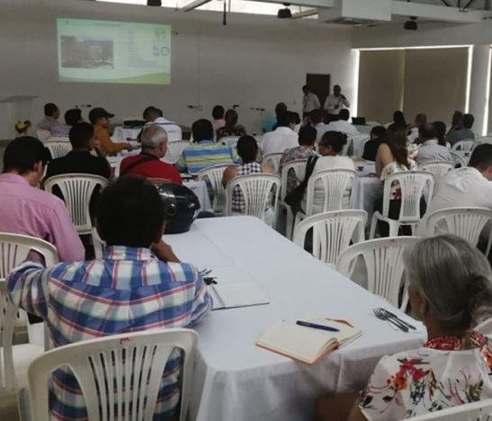 En el auditorio de Comfatolima se socializó el Plan Maestro de Silvicultura