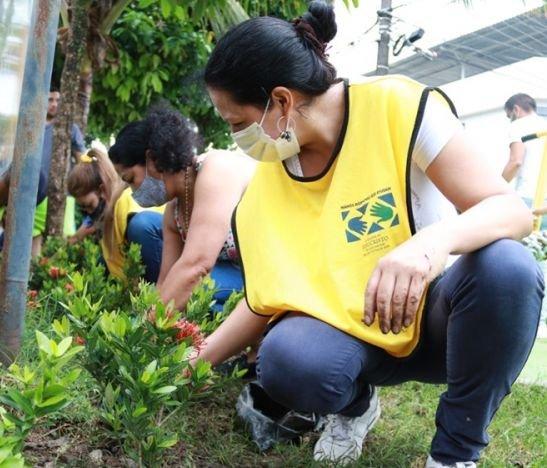 Alcaldía y más de 260 personas avanzan en el embellecimiento de los barrios de Ibagué