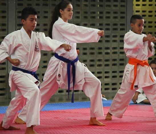 Más de 150 deportistas se dieron cita en Ibagué para disputar el Campeonato Departamental de Karate Do