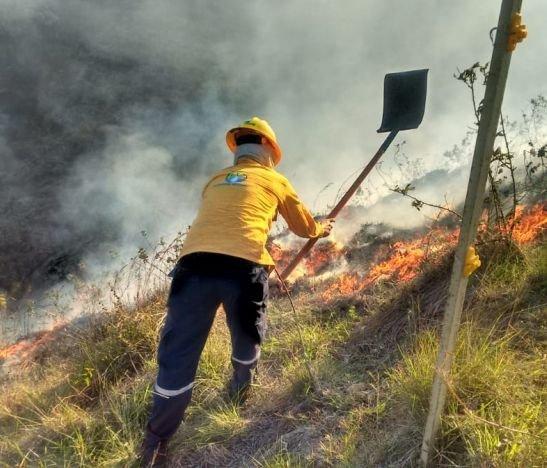 Secretaría de Agricultura también advierte sobre posibilidad de incendios forestales