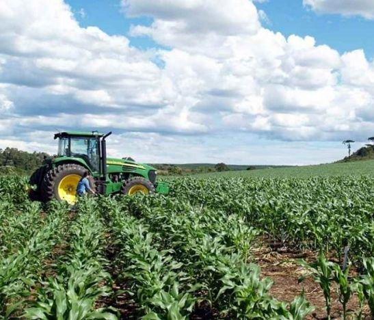Recomendaciones a agricultores del Tolima por llegada de temporada seca