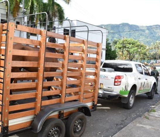 CAPA ahora cuenta con un vehículo para rescate de grandes animales