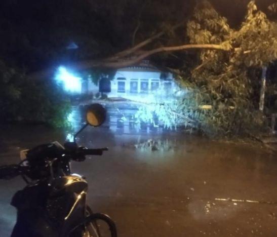 Tremendo aguacero en El Espinal dejó más de 50 familias afectadas