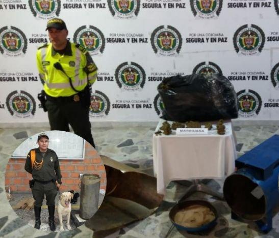 Policía Metropolitana incautó más de 40 mil dosis de marihuana en Ibagué