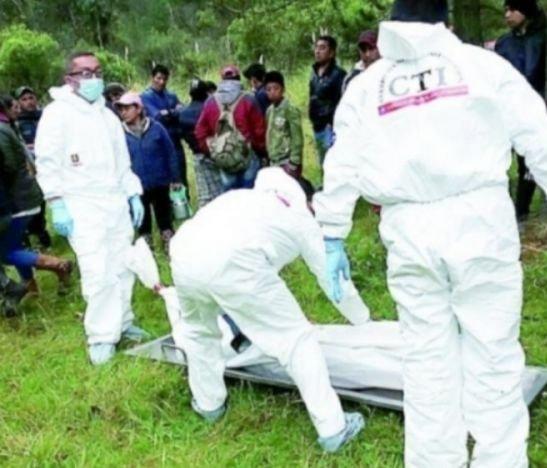 Ciudadano murió en Ibagué al caerse de un árbol