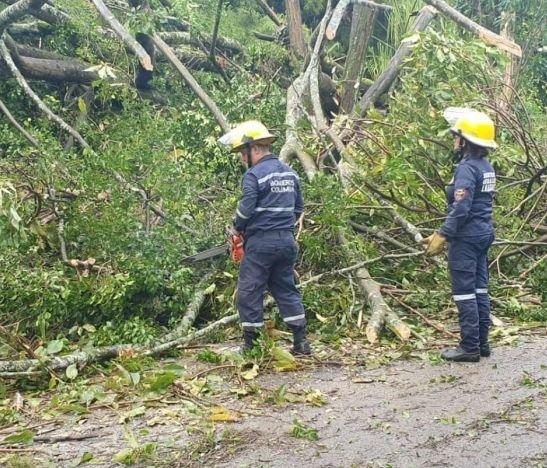 Autoridades atendieron emergencias ocasionadas por intensas lluvias