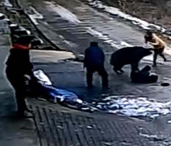 En video: Brutal ataque de un jabalí deja inconsciente a dos personas