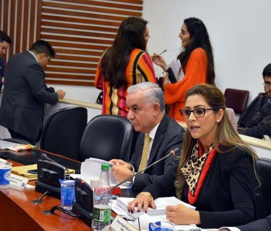 HD Adriana Magaly Matiz, Congreso- 01 de noviembre