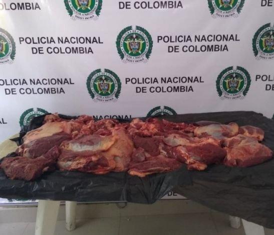 Autoridades continúan trabajando para reducir los índices de abigeato en el Tolima