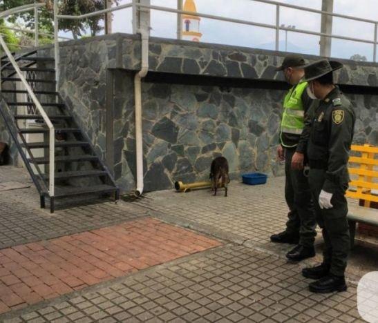 Integrantes de la Policía instalaron un comedor comunitario para perros de la calle