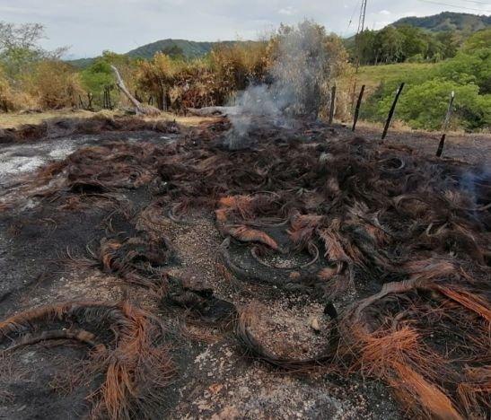Imponen medida compensatoria a dueño de predio en Mariquita donde se generó incendio