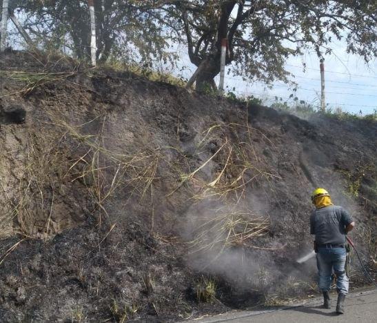 ¡Preocupación! Incendios en el Tolima no dan tregua