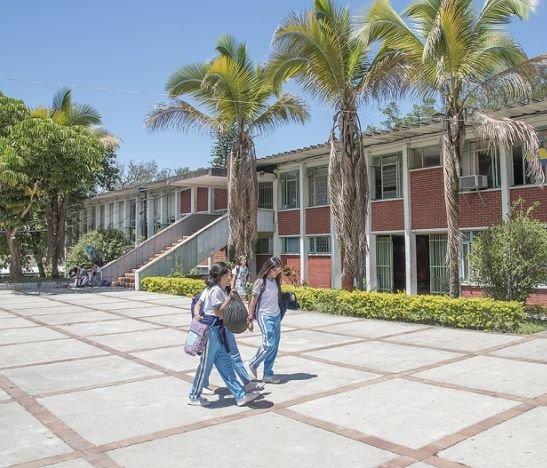 57 rectores en Ibagué serán evaluados por la Secretaría de Educación