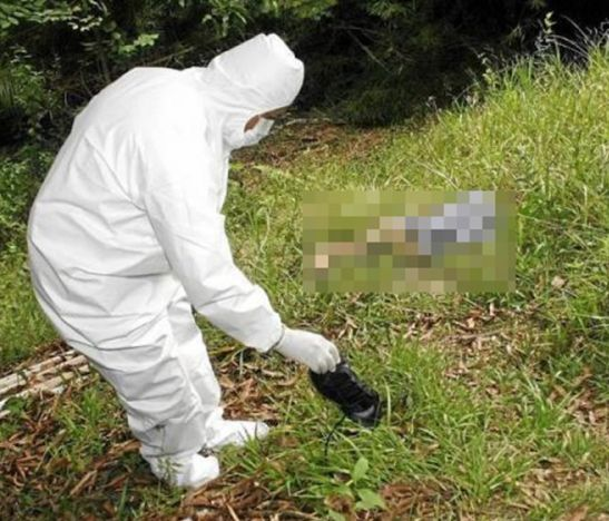 Machetearon y quemaron vivo a un abuelo en Venadillo - Tolima