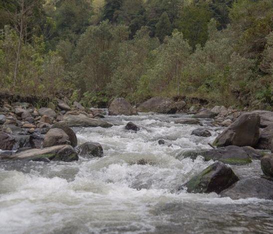 Alcaldía de Ibagué celebró el Día del Río Combeima