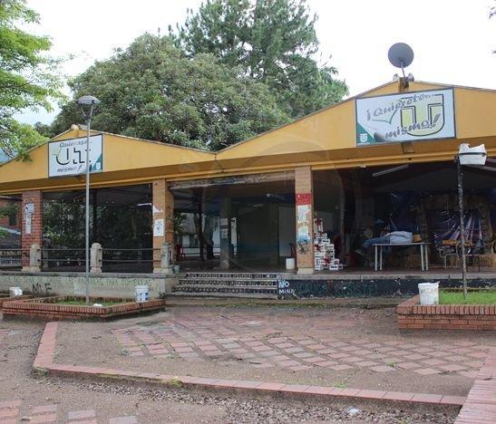 Este 20 de enero se retomarán las clases en la Universidad del Tolima