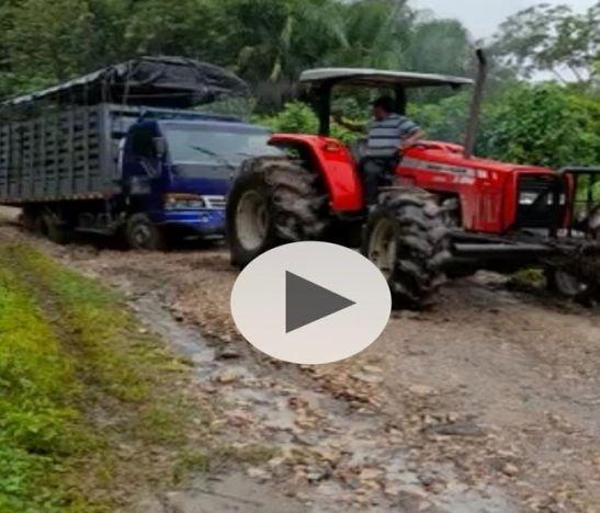 En Suárez, Tolima ni con tractor lograron remover una turbo atascada en la vía a Purificación