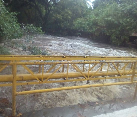 Por el desbordamiento de la quebrada Galapo en Venadillo 13 familias están afectadas