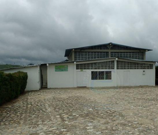 Por costo-beneficio fue cerrada la planta de sacrificio animal de Roncesvalles
