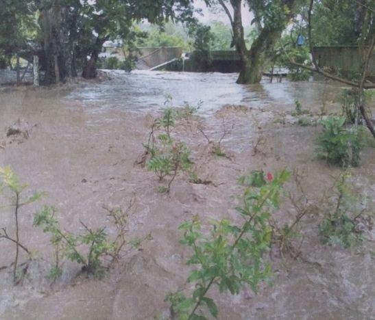 148 familias afectadas en el Tolima