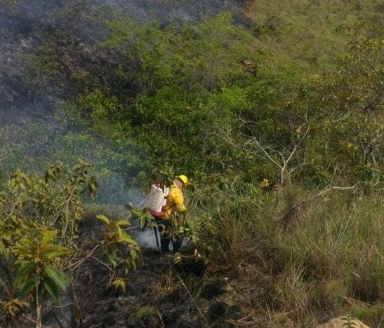 Las altas temperaturas provocaron incendios forestales en Natagaima y Carmen de Apicalá