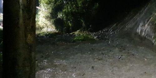 Alcaldía de Ibagué