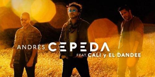 Andrés Cepeda, Cali y El Dandee