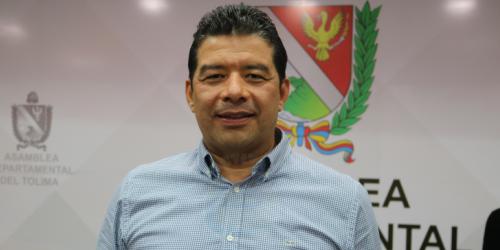Alejandro Martínez, Diputado