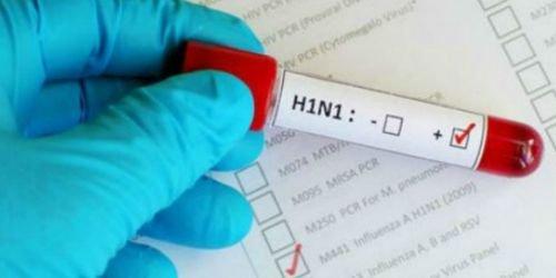 H1N1 HD-2 agosto