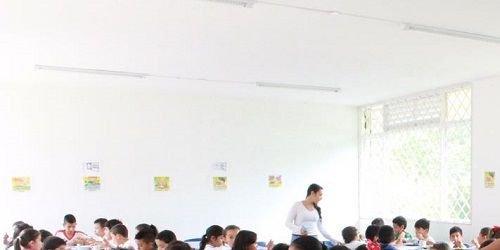 Pae Ibagué, educación Ibagué, Secretaría de Educación Ibagué