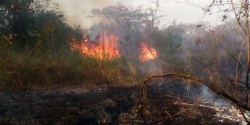 Incendios CORTOLIMA 12 municipios