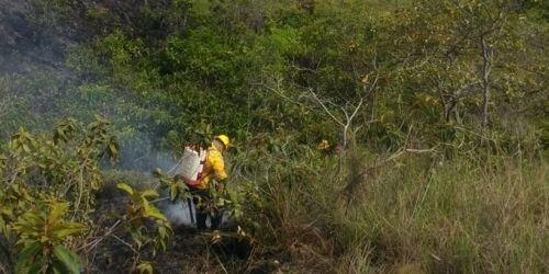 Incendios forestales Natagaima y Carmen de Apicalá 11 de junio de 2018