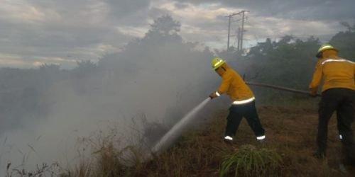 Incendios forestales 17 de julio tolima